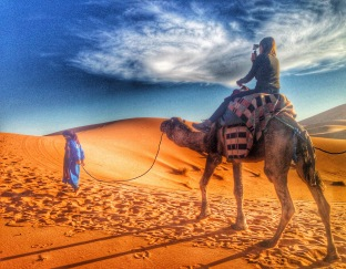 Camel riding on the Sahara Desert
