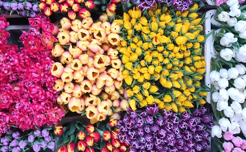Columbia Road FlowerMarket